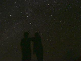 天然のプラネタリウム!亜熱帯&星空ジャングルナイトツアー