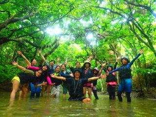 「幸運の滝」を目指せ!西表島の新定番マングローブSUP