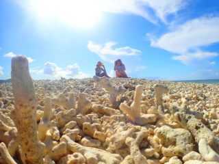 憧れの「奇跡の島」バラス島上陸ツアー
