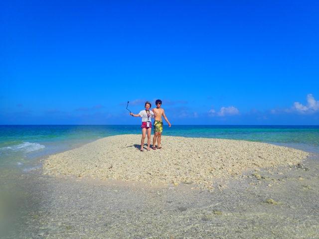 西表島 サンゴ バラス島