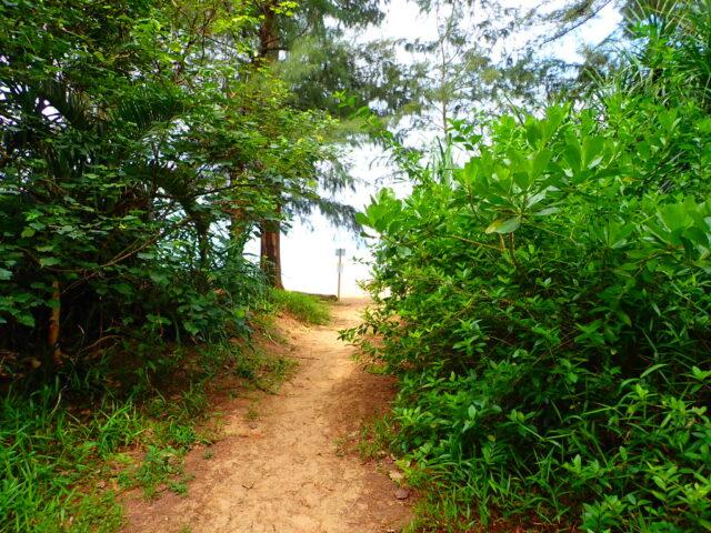 西表島 トゥドゥマリ浜入口