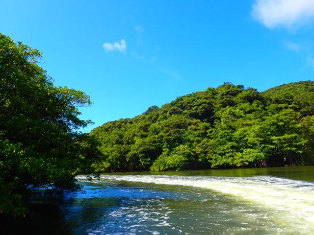 ジャングル川
