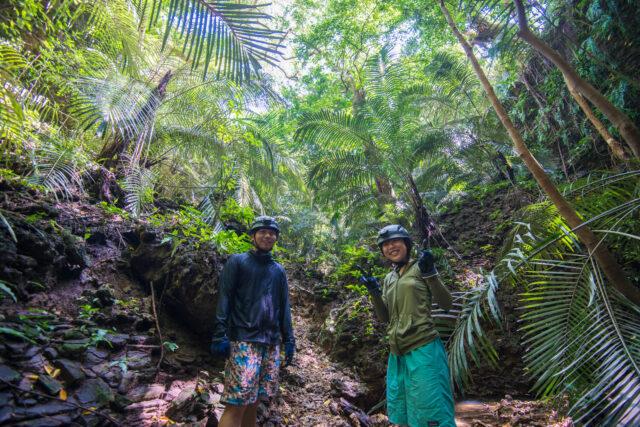 西表島 ジャングル探検