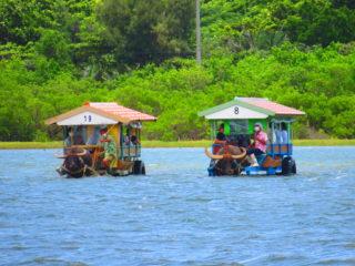 西表島を遊び尽くす!キャニオニング&由布島観光