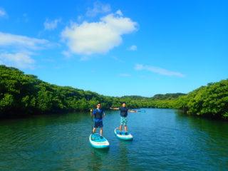 西表島のシンボル!沖縄最大落差の「ピナイサーラの滝」を目指すSUPツアー