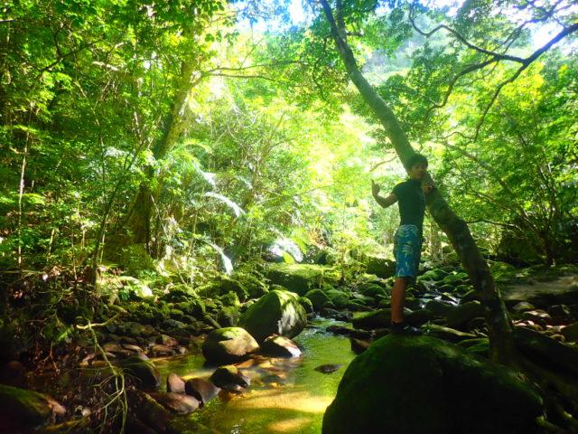 ピナイサーラの滝SUPにて、ジャングルトレッキング