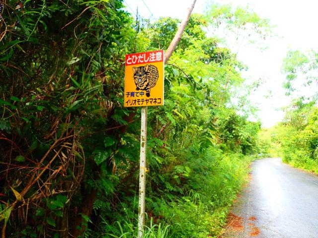 イリオモテヤマネコの標識
