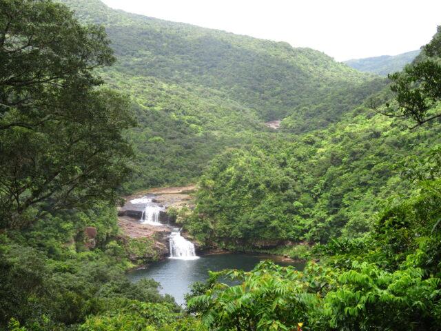 西表島 マリユドゥの滝
