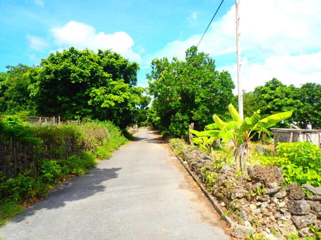 鳩間島の街並み