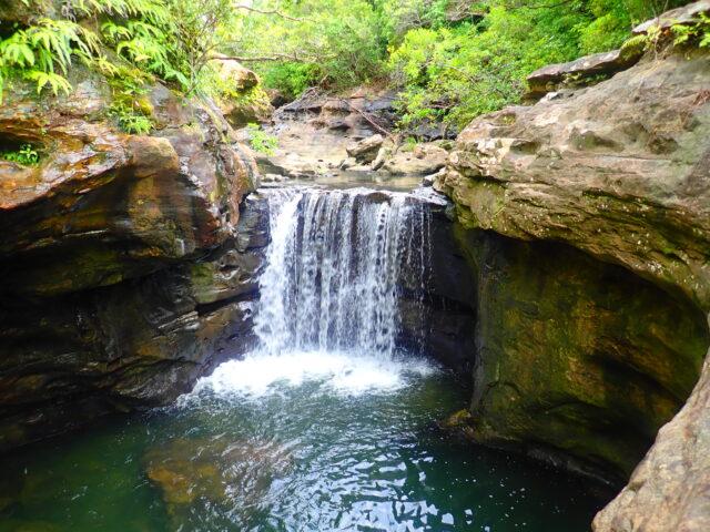 西表島 大見謝の滝
